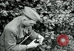 Image of 318th Infantry Regiment France, 1918, second 5 stock footage video 65675044423