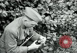 Image of 318th Infantry Regiment France, 1918, second 6 stock footage video 65675044423
