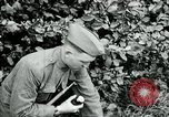 Image of 318th Infantry Regiment France, 1918, second 8 stock footage video 65675044423