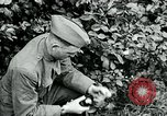 Image of 318th Infantry Regiment France, 1918, second 9 stock footage video 65675044423