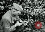 Image of 318th Infantry Regiment France, 1918, second 10 stock footage video 65675044423
