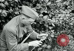Image of 318th Infantry Regiment France, 1918, second 12 stock footage video 65675044423