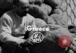 Image of blessings for fleet Greece, 1954, second 1 stock footage video 65675044579