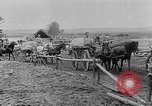 Image of Food aid from Friends Relief Committee of London, England Russia, 1917, second 5 stock footage video 65675044678