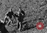 Image of Unites States Marines Korea, 1952, second 5 stock footage video 65675044761