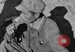 Image of Unites States Marines Korea, 1952, second 6 stock footage video 65675044761