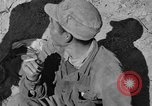 Image of Unites States Marines Korea, 1952, second 9 stock footage video 65675044761