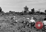 Image of French soldiers Indochina, 1950, second 3 stock footage video 65675044771