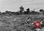 Image of French soldiers Indochina, 1950, second 6 stock footage video 65675044771