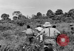 Image of French soldiers Indochina, 1950, second 10 stock footage video 65675044771