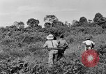 Image of French soldiers Indochina, 1950, second 11 stock footage video 65675044771