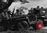 Image of French forces in Indochina Indochina, 1953, second 9 stock footage video 65675044776