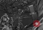 Image of French troops in combat Indochina, 1953, second 3 stock footage video 65675044777