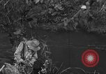 Image of French troops in combat Indochina, 1953, second 6 stock footage video 65675044777