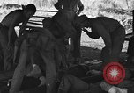 Image of Nadzab casualties Marilanin New Guinea, 1943, second 6 stock footage video 65675044792