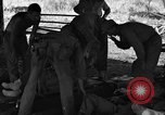 Image of Nadzab casualties Marilanin New Guinea, 1943, second 9 stock footage video 65675044792