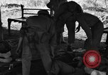 Image of Nadzab casualties Marilanin New Guinea, 1943, second 11 stock footage video 65675044792
