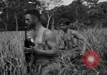 Image of Allied paratroopers Nadzab New Guinea, 1943, second 9 stock footage video 65675044793