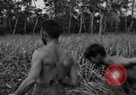 Image of Allied paratroopers Nadzab New Guinea, 1943, second 12 stock footage video 65675044793