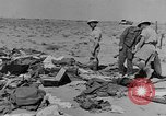 Image of British 8th Army North Africa, 1943, second 10 stock footage video 65675044797
