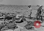 Image of British 8th Army North Africa, 1943, second 11 stock footage video 65675044797