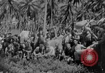 Image of Carlson's Raiders Guadalcanal Solomon Islands, 1942, second 4 stock footage video 65675044981