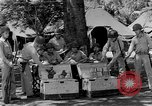 Image of United States Marines Guadalcanal Solomon Islands, 1943, second 2 stock footage video 65675044987