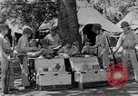 Image of United States Marines Guadalcanal Solomon Islands, 1943, second 6 stock footage video 65675044987