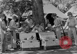 Image of United States Marines Guadalcanal Solomon Islands, 1943, second 10 stock footage video 65675044987