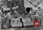 Image of United States Marines Guadalcanal Solomon Islands, 1943, second 11 stock footage video 65675044987