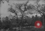 Image of Cassino Monastery Italy, 1944, second 5 stock footage video 65675045011