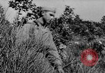 Image of German infantry and artillery Nettuno Italy, 1944, second 6 stock footage video 65675045015