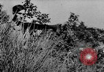 Image of German infantry and artillery Nettuno Italy, 1944, second 9 stock footage video 65675045015