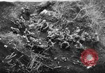 Image of German artillery bombards Allies on beachhead in Italy Anzio Italy, 1944, second 5 stock footage video 65675045021