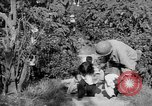 Image of United States soldiers Baguio Philippines, 1945, second 10 stock footage video 65675045280