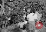 Image of United States soldiers Baguio Philippines, 1945, second 12 stock footage video 65675045280