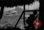 Image of United States troops Philippines, 1945, second 3 stock footage video 65675045292