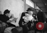 Image of Displaced Persons Germany, 1947, second 10 stock footage video 65675045314