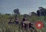 Image of United States1st Cavalry Division Vietnam, 1965, second 8 stock footage video 65675045322