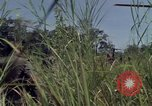 Image of United States1st Cavalry Division Vietnam, 1965, second 11 stock footage video 65675045322
