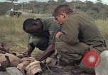 Image of United States1st Cavalry Division Vietnam, 1965, second 9 stock footage video 65675045324