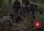 Image of United States1st Cavalry Division Vietnam, 1965, second 12 stock footage video 65675045326