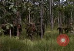 Image of United States1st Cavalry Division Vietnam, 1965, second 4 stock footage video 65675045331
