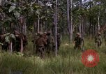 Image of United States1st Cavalry Division Vietnam, 1965, second 8 stock footage video 65675045331