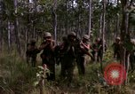 Image of United States1st Cavalry Division Vietnam, 1965, second 9 stock footage video 65675045331