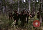 Image of United States1st Cavalry Division Vietnam, 1965, second 10 stock footage video 65675045331