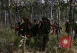 Image of United States1st Cavalry Division Vietnam, 1965, second 11 stock footage video 65675045331