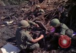 Image of 173rd Airborne Brigade Vietnam, 1966, second 6 stock footage video 65675045341