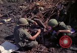 Image of 173rd Airborne Brigade Vietnam, 1966, second 8 stock footage video 65675045341