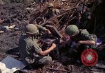 Image of 173rd Airborne Brigade Vietnam, 1966, second 9 stock footage video 65675045341